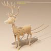03 10 41 485 reindeer6 4