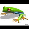 03 10 44 339 frog 01 4