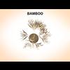 03 11 37 586 bamboo 2 4