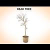 03 11 39 507 dead tree 1 4