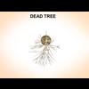 03 11 39 667 dead tree 2 4