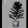 03 12 24 127 pinetree m 4