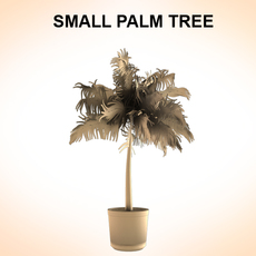 Small Palm 3D Model