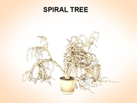Spiral Tree 3D Model
