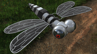 Free Dragon fly 3D Model