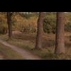 03 12 45 1 meadow1 detail 4