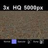 03 12 51 648 leaves on sand1 far 4