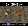 03 12 52 132 leaves on sand1 tex close 4