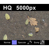 03 13 03 55 leaves on sand2 close tex close 4