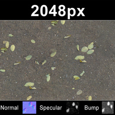 2x Leaves on Sand 2