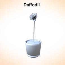 Daffodil 3D Model