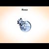 03 14 53 689 rose 3 4