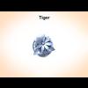 03 14 55 361 tiger 2 4