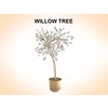 03 15 51 697 willow 1 4