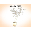 03 15 51 813 willow 2 4