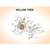 03 15 51 894 willow 3 4