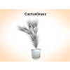 03 16 18 936 cactusgrass 1 4