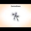 03 16 19 34 cactusgrass 3 4