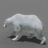 03 17 44 534 bear polar 02 4