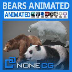 Pack - Bears Animated 3D Model