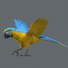03 17 48 731 parrot 0002 4