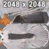 03 17 51 381 seagull hi 09 4