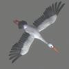 03 17 51 835 stork 03 4