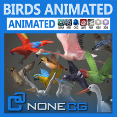 Pack - Birds Animated 3D Model
