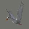 03 18 00 695 duck white 04 4