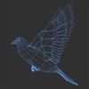 03 18 06 60 dove wire 4