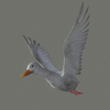 03 18 07 47 duck white 04 4