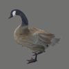03 18 08 640 goose 10 4