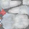 03 18 13 342 white dove tex2 4