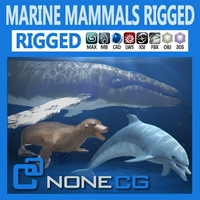 Pack - Marine Mammals 3D Model