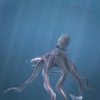 03 18 32 864 octopus 0003 4