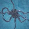 03 18 33 46 octopus 0004 4