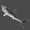 03 18 34 380 shark 09 4