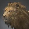 03 18 41 972 lion 0003 4