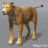 03 18 43 80 lioness 12 4
