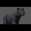 03 18 44 307 panther 06 4