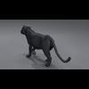 03 18 44 70 panther 03 4