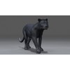 03 18 53 566 panther 04 4