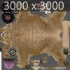 03 18 56 661 sabretooth 10 4