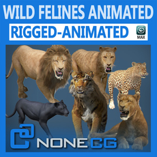 Pack - Wild Felines Animated 3D Model