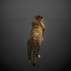 03 18 57 268 tiger 03 4