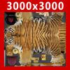 03 18 57 53 tiger 00 4