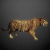 03 18 57 703 tiger 04 4