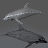 03 19 01 607 dolphin 06 4