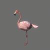 03 19 02 903 flamingo 04 4