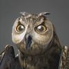 03 19 04 301 owl 0000 4